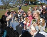Benefits of Canine Retreats