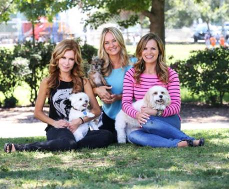 The Young and the Restless Daytime Ladies and their Dogs