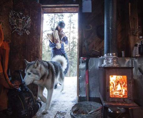 Loki The Wolfdog & Kelly Lund: A man's true best friend